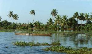 Kerala_waters